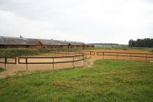 Istra Horse Farm
